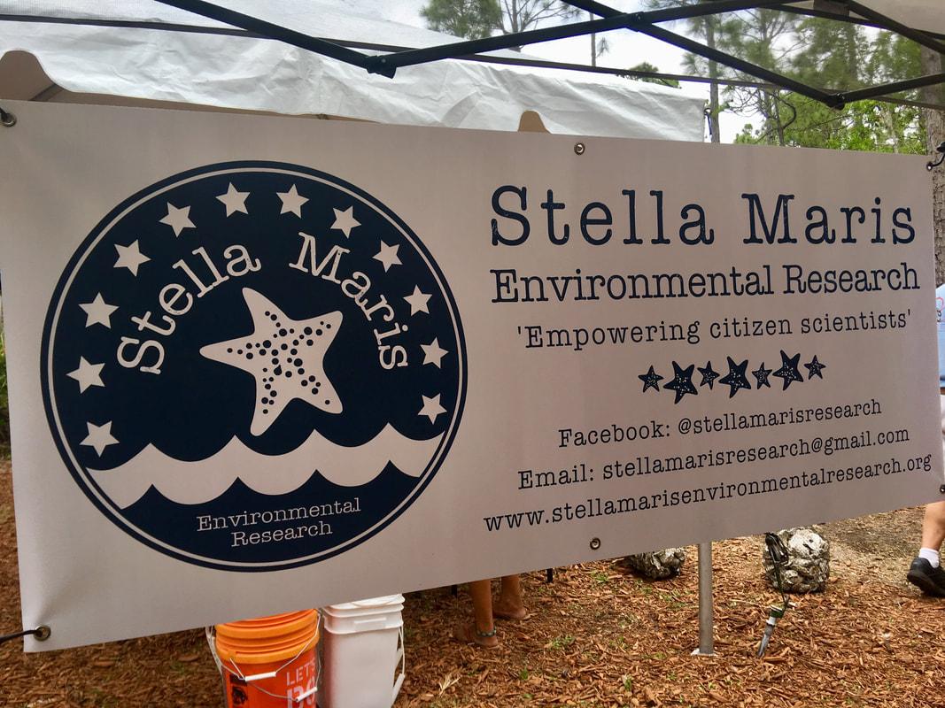 stella maris 3